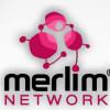 Обзор и отзыв Merlim Network: 36% в месяц.